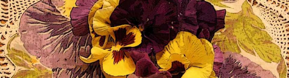 Lizzie Borden : Warps & Wefts